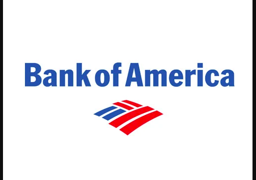 bank of america money network