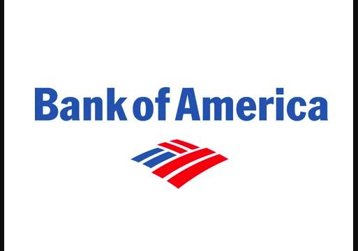 bank of america money network